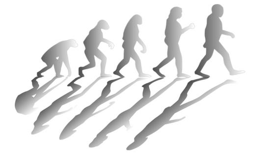 Social Media da homo sapiens a uomo digitale
